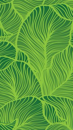 Leaves wallpaper iphone pimp my iphone pinterest leaves voltagebd Choice Image