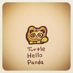 Turtle Hello Panda #turtleadayjuly - @turtlewayne- #webstagram