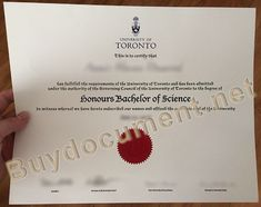 University Of Toronto, Certificate, Sweden, High School, Image Link, College, Stuff To Buy, University, Grammar School