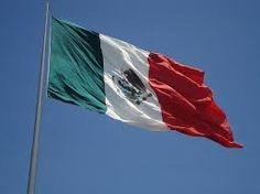 Afbeeldingsresultaat voor mexicaanse vlag