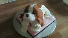 A CAVALIER KING CHARLES BIRTHDAY CAKE Adorable Animals Pinterest