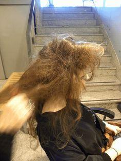 Teased Hair, Hair Setting, Dreadlocks, Hair Styles, Beauty, Hair Highlights, Hair Growth, Hair Style, Tease Hair
