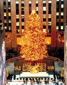 NYC at Christmas time! :) I want to have the image like on Home Alone, the BIG tree in Central Park!