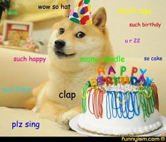 Check Out the Best Political Memes of the Decade: 2010 Lustige Doge Meme Funny Political Memes, Very Funny Memes, The Funny, Funny Doge, Doge Meme, Funny Animal Memes, Funny Animals, Birthday Meme Dog, Birthday Wishes