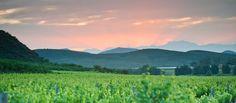 Sunset views at Orange Grove Farm