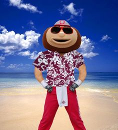 BRUTUS BUCKEYE at the beach Scarlet & Grey Ohio State Buckeyes OSU Go Bucks!! Love Brutus O-H-I-O