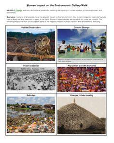 Human Impact on the Environment: Gallery Walk by Biology Boss | Teachers Pay Teachers