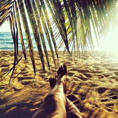 "@goldfish_kiss's photo: ""Just me, layin' under the palm tree"""