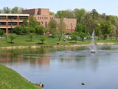 17 of the Top Colleges and Universities in Virginia: George Mason University (GMU)