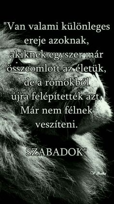 Szabadok Poem Quotes, Motivational Quotes, Life Quotes, Inspirational Quotes, Famous Quotes, Best Quotes, Mega Sena, Who You Love, Life Learning