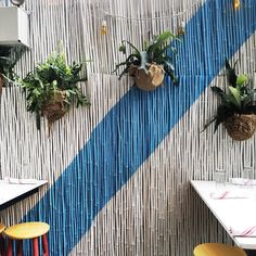 Hanging Planters at Gilligan's, Soho Grand, NYC.