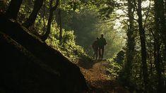 Sate izolate de daci-gugulani, prin muntii Cernei, jud. Caras-Severin Bradley Mountain, Romania, Amen, World, Youtube, The World, Youtubers, Artist, Youtube Movies