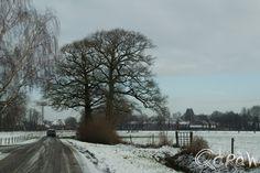 http://blog.qdraw.nl/twello-en-omgeving/terwolde-en-nijbroek-in-de-sneeuw-2015/#lightbox%5Bblog%5D/2/ Terwolde en Nijbroek in de sneeuw (2015) ; Zicht op Terwolde (Broekhuizerstraat) | foto 3
