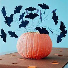 flotte halloween dekoration schwarze Dekofledermäuse und kleiner Kürbis