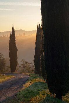 Mountain monkeys: autumn Tuscany - Val d'Orcia