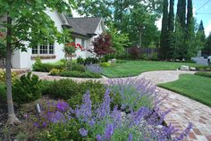 Front Yard Colonial Style House and Landscape