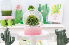 wild & free cactus party ideas
