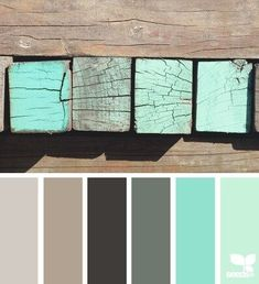 Tiffany blue accent wall, 2nd taupe from right as main color on walls
