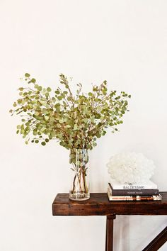 Inside a Guest Bedroom Makeover That Transports Its Visitors to Spain Home Staging, Spanish Bedroom, Animal Print Shop, Spanish Revival, Table Arrangements, Flower Arrangements, Diy On A Budget, White Paints, Contemporary Furniture