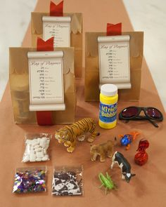 10 plagues of Egypt in a bag.  Most of this won't work for us, but I think there is some inspiration  here... I think solar eclipse glasses would be even better than sunglasses - http://www.amazon.com/gp/product/B007YTFFK0/ref=gno_cart_title_1