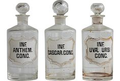 Antique Pharmacy Bottles, S/3 on OneKingsLane.com