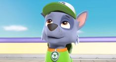 Paw Patrol Rocky, Nerd, Trunks, Pictures, Ice Cream, Wallpapers, Fictional Characters, Humor, Games