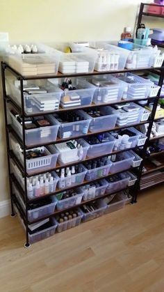 I had a problem............. how to organize and store over 200 ink pads and their reinkers, over 100 sprays and mists, paints, and embos...