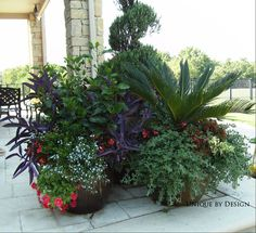 Unique by Design l Helen Weis Spring Garden, Spring Summer, Garden Container, Large Containers, Unique Gardens, Outdoor Plants, Hanging Plants, Landscape, Yard Ideas