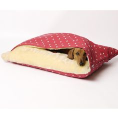 Snuggle Soft Warm Dotty Raspberry Design Cushion Pet Sofa Luxury Dog Bed for sale online Snuggle Dog, Animals And Pets, Cute Animals, Animal Projects, Sleeping Dogs, Pet Beds, Diy Stuffed Animals, Pet Accessories, Pet Shop