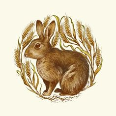 Rabbit in Wheat (Illustrated family sigil commission, by Teagan White). I like the idea of using wheat as a frame, except for a bison head instead of a rabbit. Family Illustration, Illustration Art, Rabbit Art, Rabbit Hole, Bunny Art, Peter Rabbit, Illustrations, Buy Prints, Mandala Art