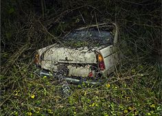 Paradise Parking: Vintage Cars are Swallowed Up by Trees and V...