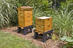 BeeSmartDesigns.com for the best products for your apiary! #bee #bees #beekeeper #beekeeping #hive #hives #hivestand #hivecover