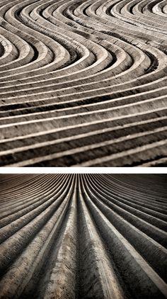 Field: Photography Series by Joerg Marx | Inspiration Grid | Design Inspiration #art #photography