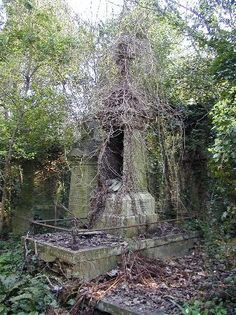 Over grown grave n high gate cemetery in London England