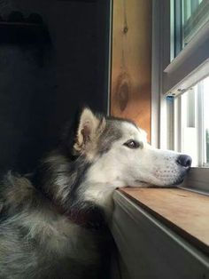 Waiting for Mom