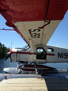 Lost in America - thehivernant: de Havilland Beaver -hvrnt Amphibious Aircraft, Bush Plane, Float Plane, Underwear Brands, Flying Boat, How To Wake Up Early, Amphibians, Airplanes, Beavers