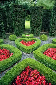 Alice in Wonderland Theme Queen of Hearts Garden