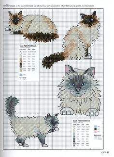 Cats. x-stitch or afghan ☀CQ #crochet