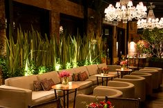 A Cenográphia elaborou uma decoração em verde e marsala na Casa Petra, que é uma ótima inspiração para a ambientação do casamento! Moroccan Restaurant, Outdoor Restaurant, Restaurant Bar, Restaurant Interior Design, Cafe Interior, Shop Interior Design, Marsala, Back Bar Design, Tiki Bar Decor