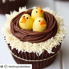 C'mon Spring! I need you!! #todayscupcake #Repost @bestcupcakeideas  #cupcakes #sweets #instabake #desert #yummy #delicious #cute #inspiration #baking #bestcupcakeideas