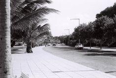 A Estrada Marginal de Lourenço Marques, no local onde alguns anos mais tarde foi edificado o Viaduto da Ponta Vermelha.