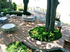 Do you have a beautiful old tree you don't want to have to cut down but really want a new deck? Why not build around it?