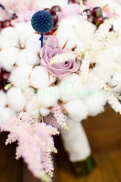 Astilbe, Happy Flowers, Navy, Hale Navy, Old Navy, Navy Blue