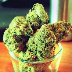 www.cannabistraininguniversity.com  Go to www.facebook.com/thectu  #marijuana #cannabis #weed #weedstagram #ganja #thc #bakedlife #staylifted #ctu