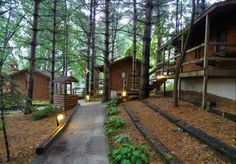 Shipshewana's North Park Amish Log Cabin Lodging and Campground Is The Best Log Cabin Camping In Indiana
