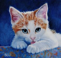 """My Blue-Eyed Boy -  by Astrid Bruning ~  My beautiful """"Clawed"""" when he was a kitten."""
