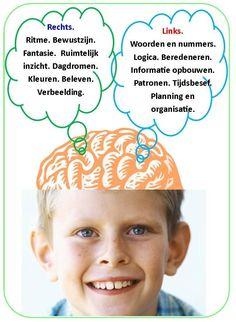 Bij een beelddenker is de rechterhersenhelft beter ontwikkelt. Jammer voor hen dat het Nederlandse onderwijs zo ontzettend talig is!