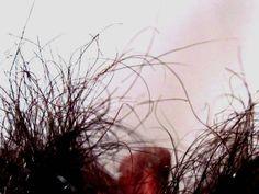 """""""Memoria 2"""", de la serie """"Detalles que enamoran""""  Artista: Diana Molina, fotografía digital impresa en vinilo adhesivo mate sobre soporte rígido, 30x45 cm, 2014, +PA"""