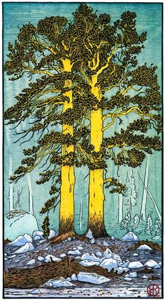 One of my very favorite artists: Tom Killion -Twin Lodgepole Pines (2011)