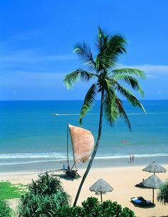 #1 The Beautiful Sri Lankan coastline - there are many beautiful beaches with white sands all around the island - Unawatuna, Arugam Bay, Bentota, Tangalle and Nilaveli...to name a few.